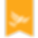 flag_yellow_transparant-01.png