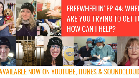 Freewheelin' Ep 44: Where Are You Trying To Get To? Can I Help?