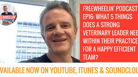 Freewheelin' Ep 16: What 5 Things Does A Leader Need Within Their Own Practice For A Happy Effic