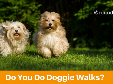 Do You Do Doggie Walks?