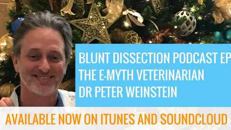 Blunt Dissection Ep 12: The E-Myth Veterinarian - Dr Peter Weinstein