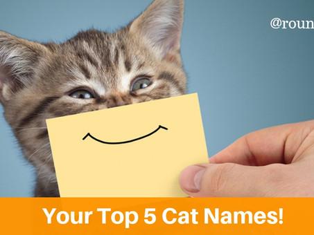 Your Top 5 Cat Names!