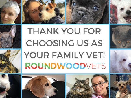 Thank You For Supporting Our Work!