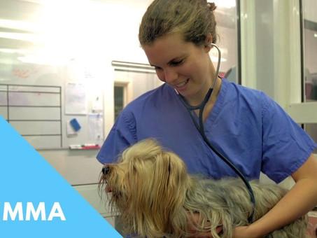 Meet The Team: Dr Gemma