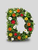 New Logo - D7.jpg