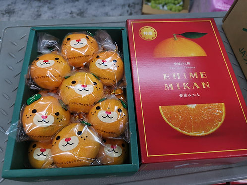 Japanese Ehime Mikan oranges