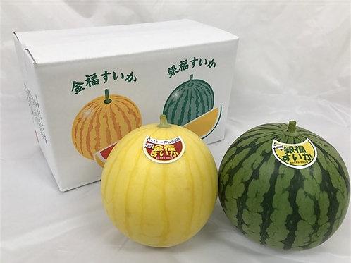 Japanese Kinpuku(Golden Fortune) watermelon set box