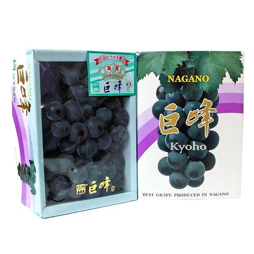 Japanese Kyoho black seadless grape gift box