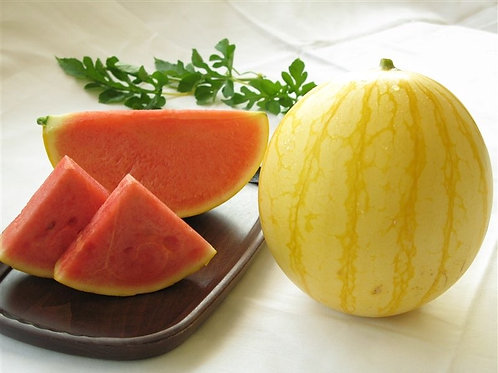 Japanese Golden Fortune Watermelon