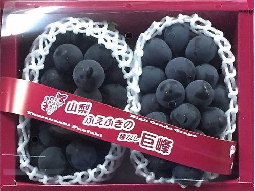 Japanese Takumi No Bydou Kyoho Grapes