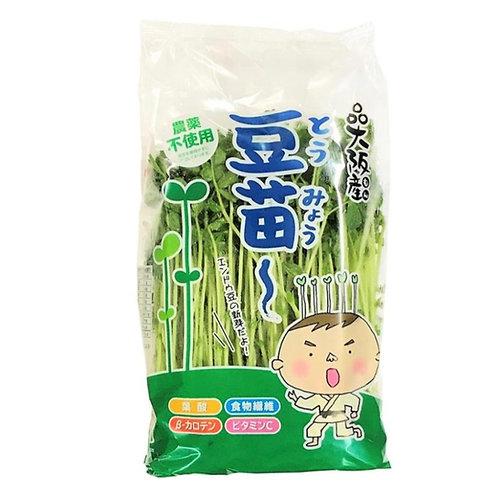 Japanese Organic Dou Myou