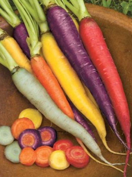 Australian Organic Rainbow Carrot