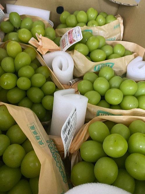 Japanese shine muscut grape