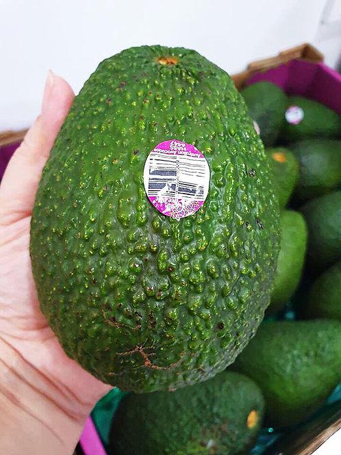 Australian Jumbo Avocado