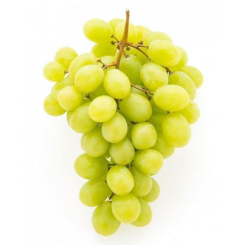 USA sweet Globe seadless grape