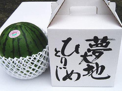 Japanese Yumedaiti Hitorijime Watermelon