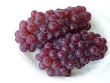 Japan Delaware Champaign Grape