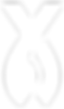 Logo Rybar Lipno | Wakeboard Lipno | Vodní lyže Lipno