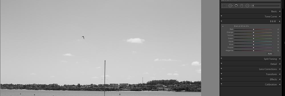 """Imagem convertida em preto e branco - O HSL vira """"mistura de preto e branco"""""""