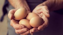 Quantos ovos posso comer por dia?