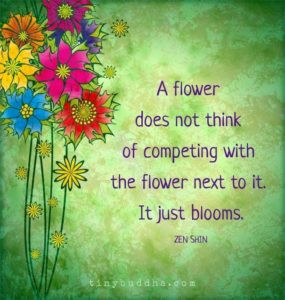Bloom and Grow – exercising your positive characteristics