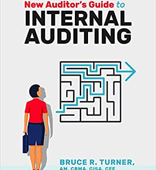 New Auditor's Guide to Internal Auditing Pitt Group