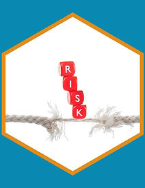 Pitt Group Managing Risks