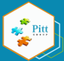 Pitt Group Logo