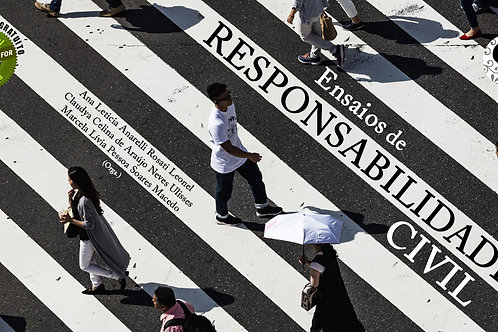 43x - Responsabilidade