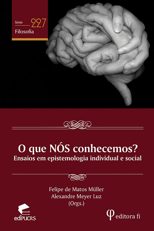 O que NÓS conhecemos?: ensaios em epistemologia