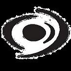 LOGO VISION PRO ridotto_modificato_edite