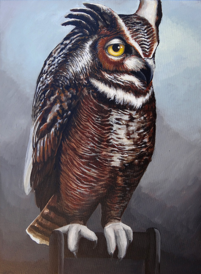 owl_male