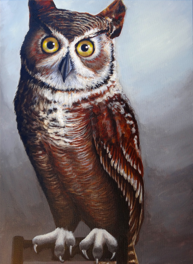 owl_female