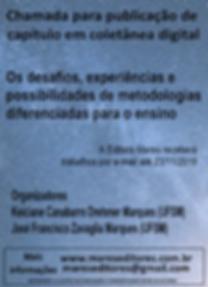 Cartaz_Os_desafios,_experiências_e_possi