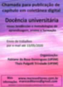 Cartaz_Docência_universitária.png