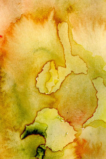 Original watercolour ready to be made into a disperse dye print.