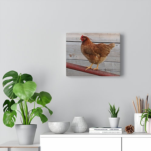 The Sweet Life Farm Chicken Hen Canvas Gallery Wrap Wall Decor Hanging