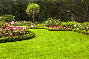 Lawn Care & Landscaping image
