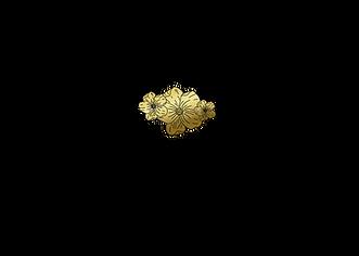 Logo l Relax.Loft_schwarz-gold.png