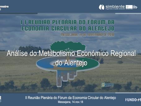 Metabolismo Económico Regional do Alentejo