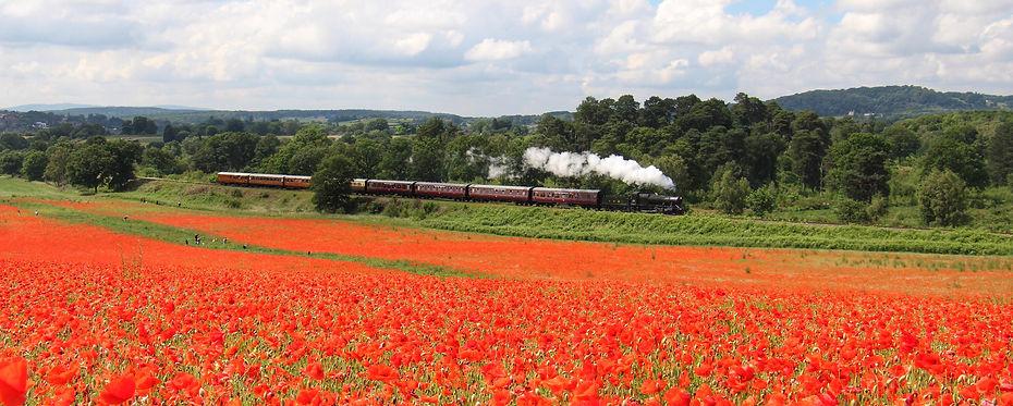 2857 by the poppies at Bewdley on 26th June 2021. John Sherratt (Copy).jpeg