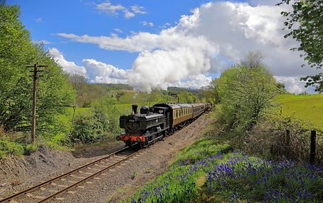 7714 among the bluebells north of Arley