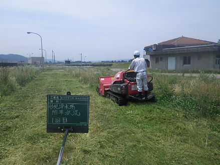 草刈②.JPG
