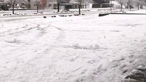 とうとう雪。