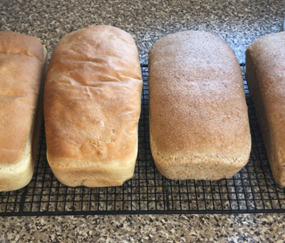 Bread of Heaven...