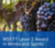 WSET_WinesSpirits_Level2_1600x1600.jpg