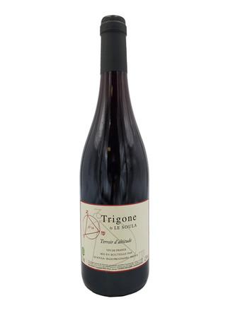 Trigone Le Soula.jpg