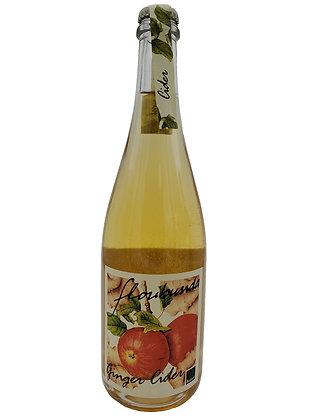 2019 Floribunda Ginger Cider