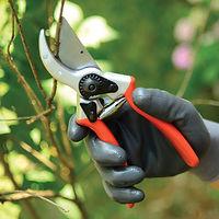 1_Intro-SEO_Gardening-Tools.jpg