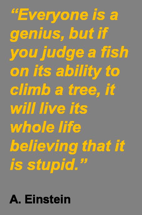 einstein quote.png